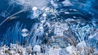 将订婚仪式搬进海底世界,故事还要追溯到7年前那场跨国恋的开始
