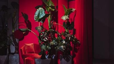 不只婚礼设计,摩卡团队跨界合作艺术家打造《唤·醒》艺术展