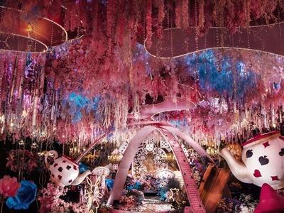爱丽丝梦游仙境梦幻婚礼