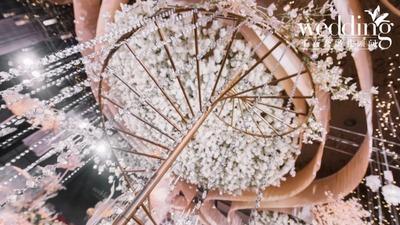 奈良的樱花小鹿竟出现在婚礼现场