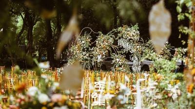我想与你共度,世界之外的61秒,黄色户外婚礼