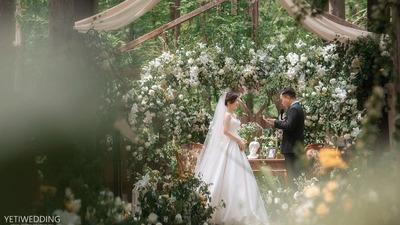 一场在水杉林里举行的户外婚礼