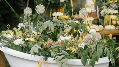 治愈系暖黄色户外婚礼,田园间穿梭的橘猫,橘猫主题婚礼