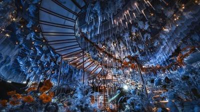 哥特风古建筑的童话婚礼,深蓝色的神秘梦幻