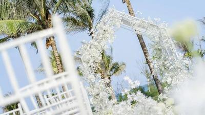 白色的海边婚礼,在草坪和蓝天的映衬下更生动