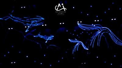 以鲸鱼为主题的梦幻深海蓝+白色系海洋婚礼